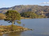 Loch Morar, Highlands, Scotland, United Kingdom, Europe