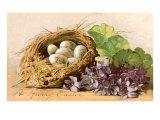 Happy Easter, Eggs in Nest