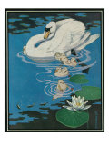 Nature Magazine - View of a Swan with Her Cygnets (Young Swans), c.1931