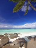 Rocks and Palm Tree on Tropical Beach, Seychelles, Indian Ocean, Africa