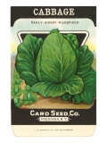 Cabbage Seed Packet