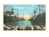 Cotton Shipping, Savannah, Georgia