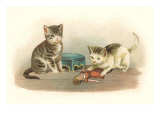 Two Kittens with Doll