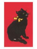 Black Cat Graphic