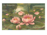 In Sympathy, Water Lilies