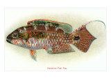 Hawaiian Fish, Pou