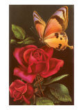 Red Roses with Yellow Swallowtail Butterfly