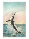 Swordfish on the Line