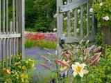 Garden Gate, Bainbridge Island, Washington, USA