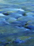 The Ohanapecosh River, Mt. Rainier National Park, Washington, USA