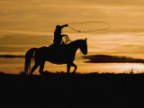 Cowboy on Horses on Hideout Ranch, Shell, Wyoming, USA