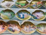 Painted Shells, Kyoto, Japan