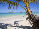 Palm shadow on Lanikai Beach, Mokulua islands, Hawaii