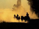 Cowboys Driving Wild Horses, Burns, Oregon, USA