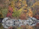 Fall Foliage Along the C&O Canal
