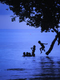 Children Playing, Jumping from a Tree into Water