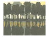 Lake at Dawn II