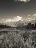 Mendoza Province, Uspallata, Andes Mountains and Rio Mendoza River, Argentina