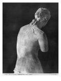 Venus De Milo, Back View, Hellenistic Period, C.130-100 Bc
