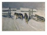 Wolfs, Winter Night, c.1910