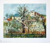 Spring at Pontoise
