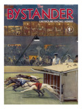 Bystander Greyhound Racing Number