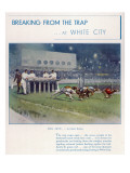 Greyhound Racing at White City