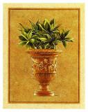 Vase Medicis I