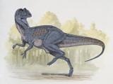 Chilantaisaurus Dinosaur Walking in Water