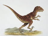Side Profile of a Dinosaur Running