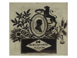"""""""""""Bonaparte a Lyon"""""""": tableau tisse dans un cadre noir et dore"""