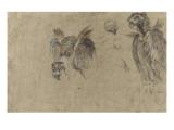 Deux etudes de vautour et deux details