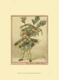 The Box Tree Fairy