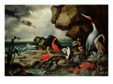 A Penguin, a Pair of Flamingoes, and Other Exotic Birds, Shells, and Coral on the Shoreline