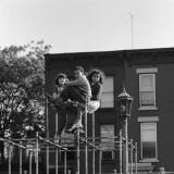 Three Children Sitting on Top of Jungle Gym