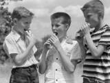 Three Boys All Wearing Short Sleeve Shirts