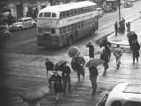 People Crossing Street in Rain, Elevated View