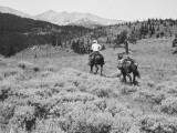 Cowboy Riding Horse, With Second Hold on Reins