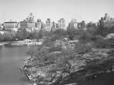 New York City, Central Park (B&W)