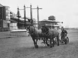 Newbury Race Course
