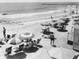 People Sunbathing at Beach