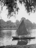 Boys in Boats