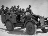 Desert Army