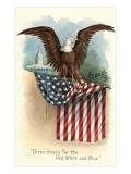 Capitol, Eagle and Flag