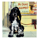 """""""""""No Dogs Allowed,"""""""" August 24, 1946"""