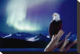 Eagle and Aurora Borealis