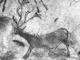 Prehistoric Cave Painting of an Animal