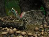 A Compsognathus Prepares to Swallow a Small Lizard
