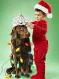 Young boy wrapping Christmas lights around a dog