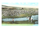 Sheep Ranch, Montana